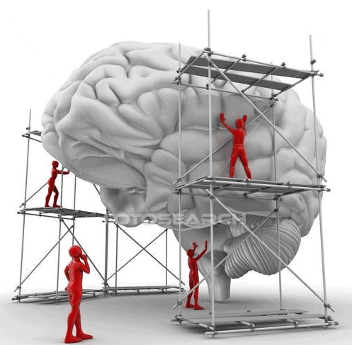 Build the mind that works for you