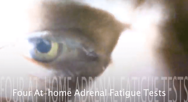 4 adrenal fatigue tests