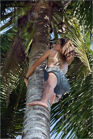 climbing a tree keeps you young