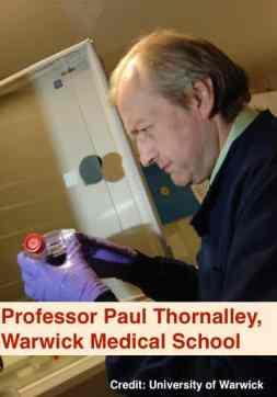 Professor Paul Thornalley