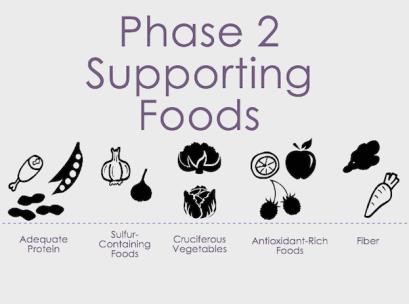 Phase II Detox Foods