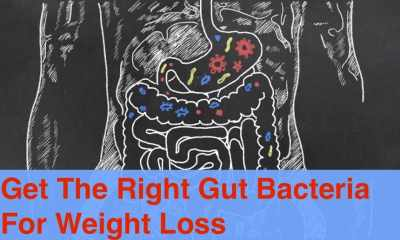 You need the right gut bacteria to be thin.