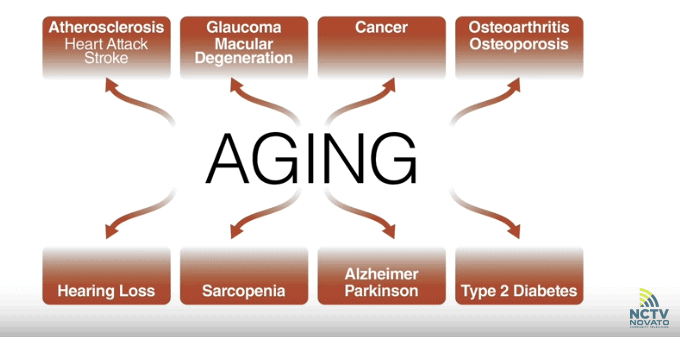 Dr. Verdin: the chronic diseases associated with aging