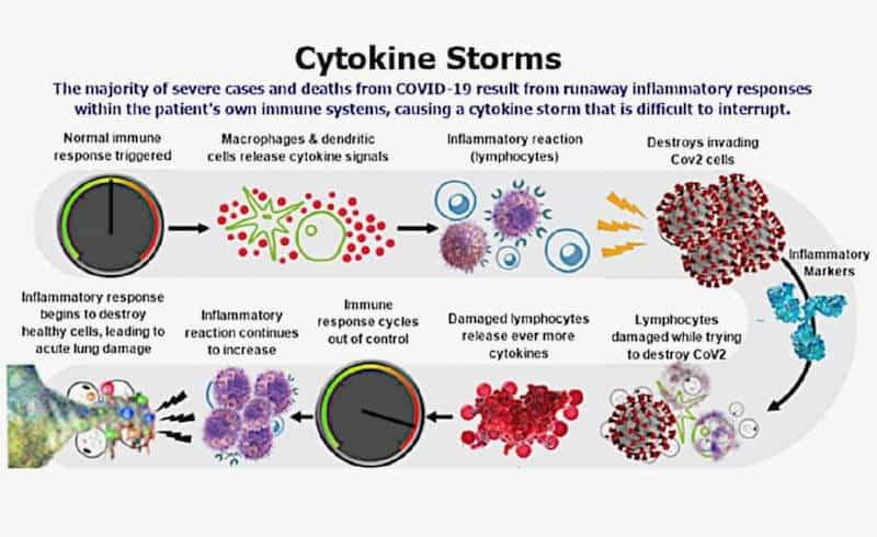 Herd immunity to prevent the dreaded cytokine storm