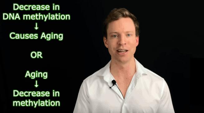 3 Ways to Increase DNA Methylation
