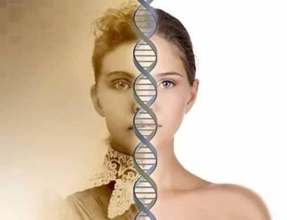 Increase DNA methylation