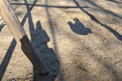 Schatten von Kind auf Schaukel