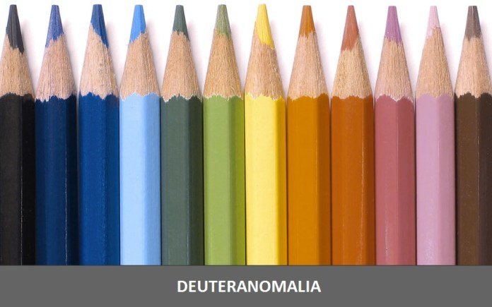 """Essa imagem mostra como a pessoa que tem Deuteranomalia vê as cores. A impressão que temos é de que as cores são menos """"saturadas"""""""