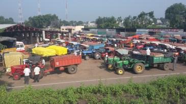 The onion Market at Umarane, Maharashtra.