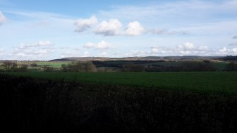 The Southdowns