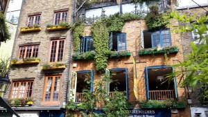 Windows in Neals Yard London