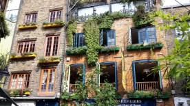 Windows in Neals Yard London