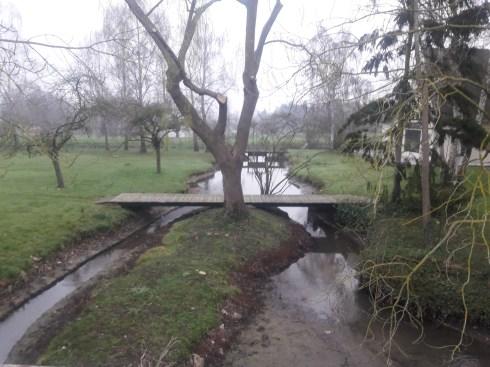 Stream tree and bridge