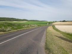 Road fields