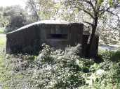 Loads of WW2 bunkers all along the canal today