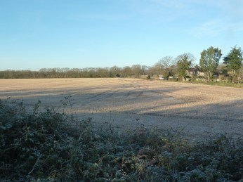 Frost covered fields