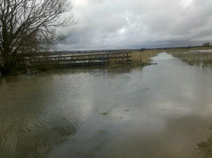 Barnham cycle path under water