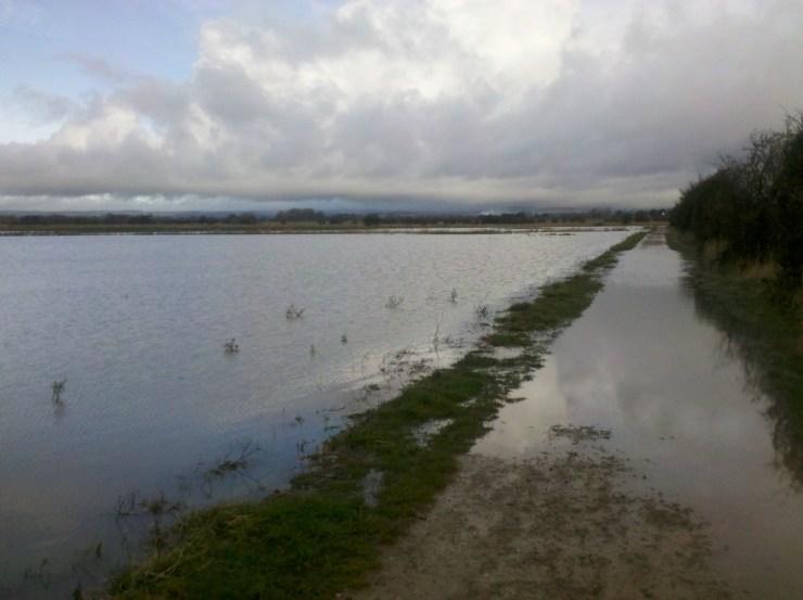 Barnham cycle path