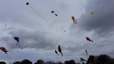 Kites at the Bognor Regis kite festival