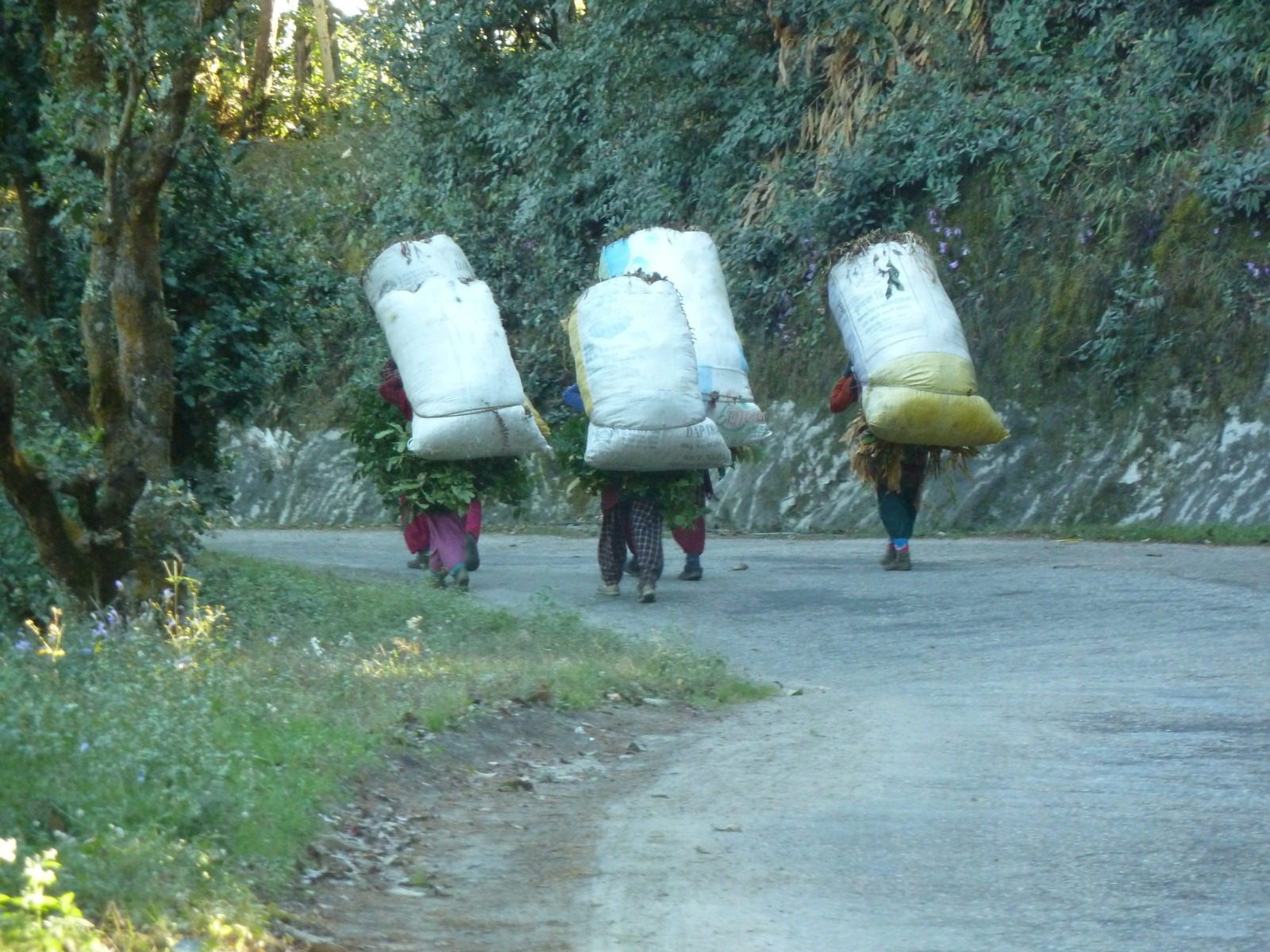 People walking on the Tribhuvan Highway