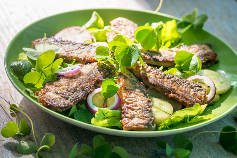 Reņģu salāti ar zaķkāpostiem