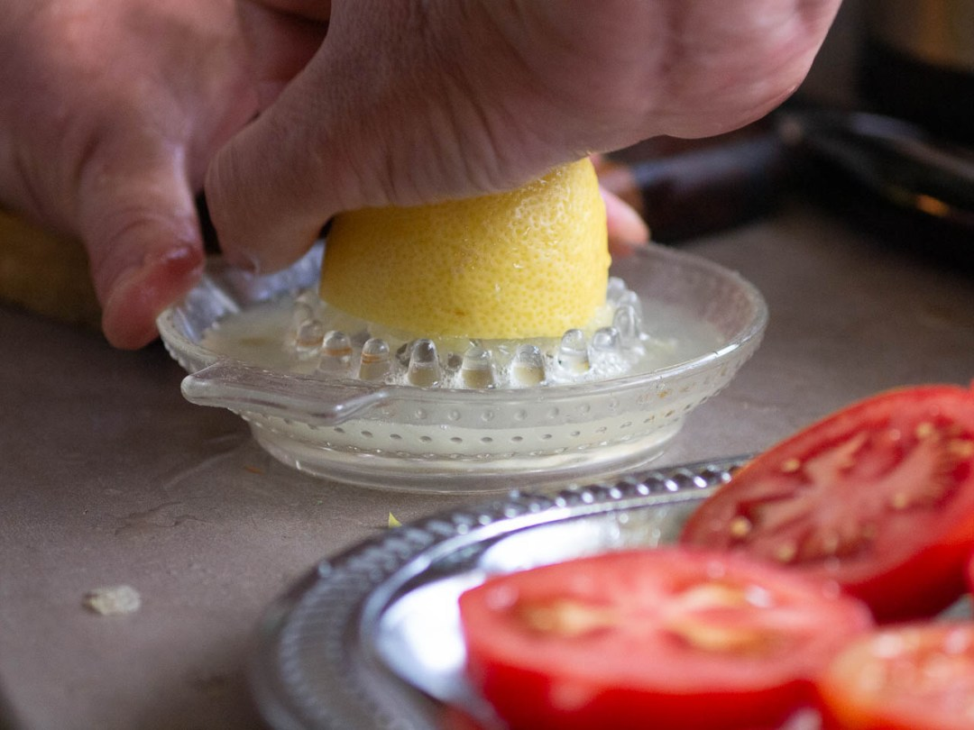 Grileti-tomati-04