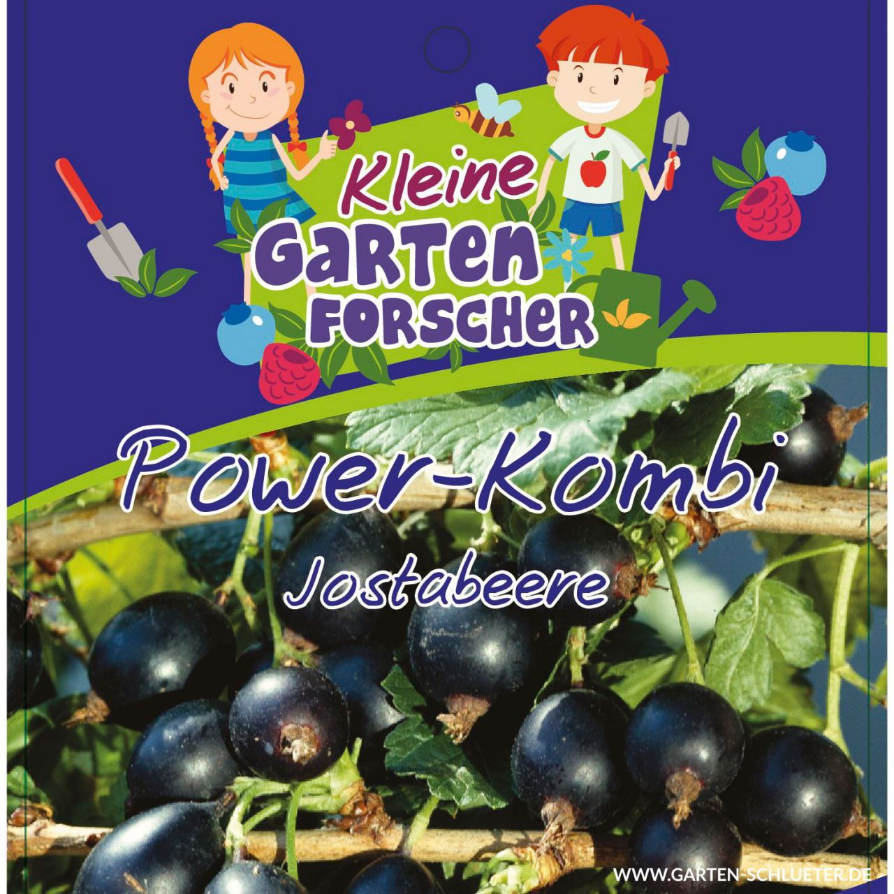 Jostabeere 'Power-Kombi' Kleine Gartenforscher