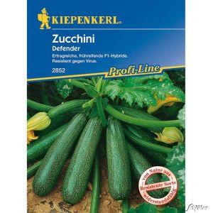 Zucchini 'Defender'