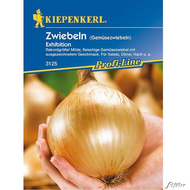 Zwiebeln Exhibition