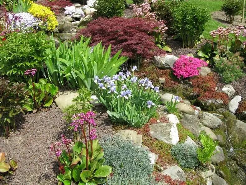 Steingarten Anlegen Eine Schritt Für Schritt Anleitung