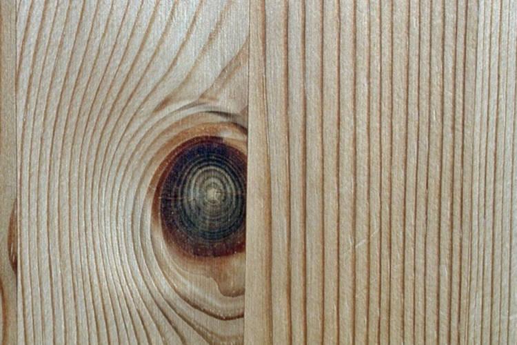 Kiefer-Holz