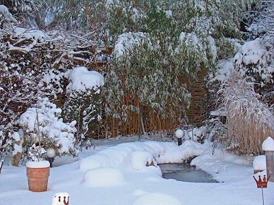 gartenteich im winter mit schnee