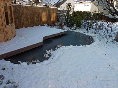 Komplett zugefrorener Gartenteich - Was tun?