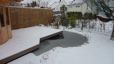 Trotz Minusgraden und Schneefall - Der Teich atmet...