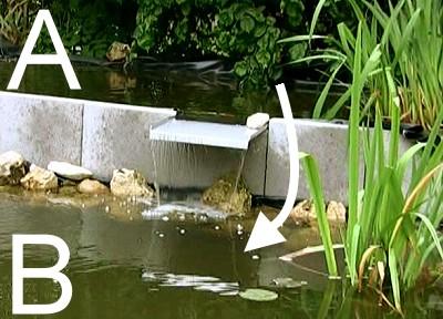 der weg des kois in den unteren teich