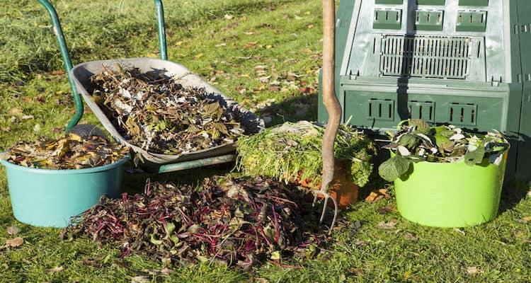 Herbst Kompost