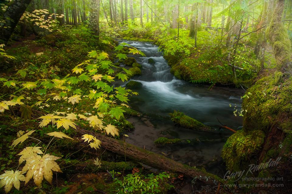 Little Zigzag River