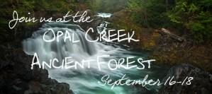 Opal Creek Ancient Forest Workshop