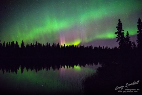 The aurora near Talkeetna Alaska