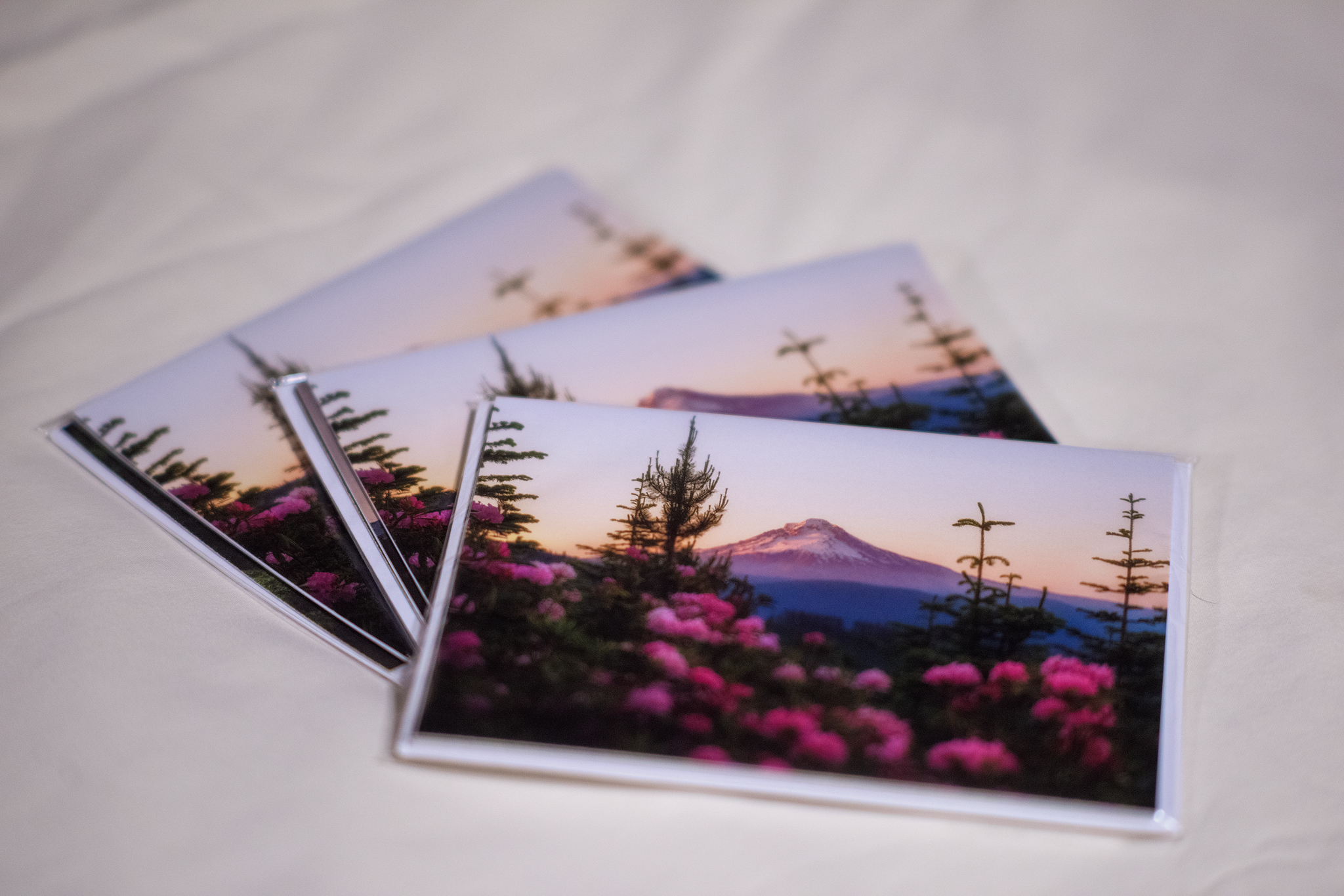 Assorted Gift Card Set of Four (4)