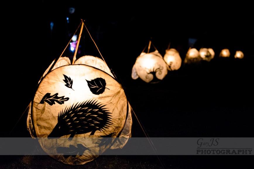 Imbolc Festival 2014 - Lanterns