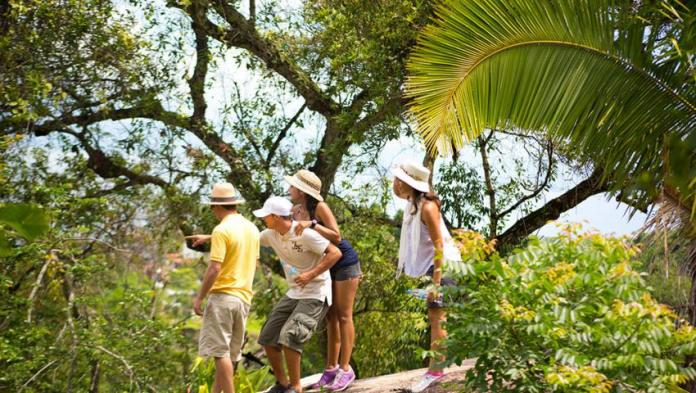 Birdwatching Tour | Nature Lovers | Puerto Vallarta Activities