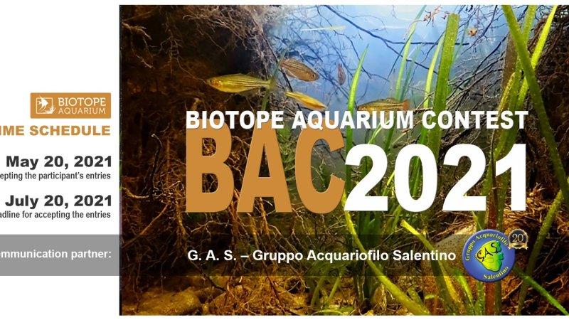 Al via l'evento acquariofilo mondiale BIOTOPE AQUARIUM CONTEST 2021