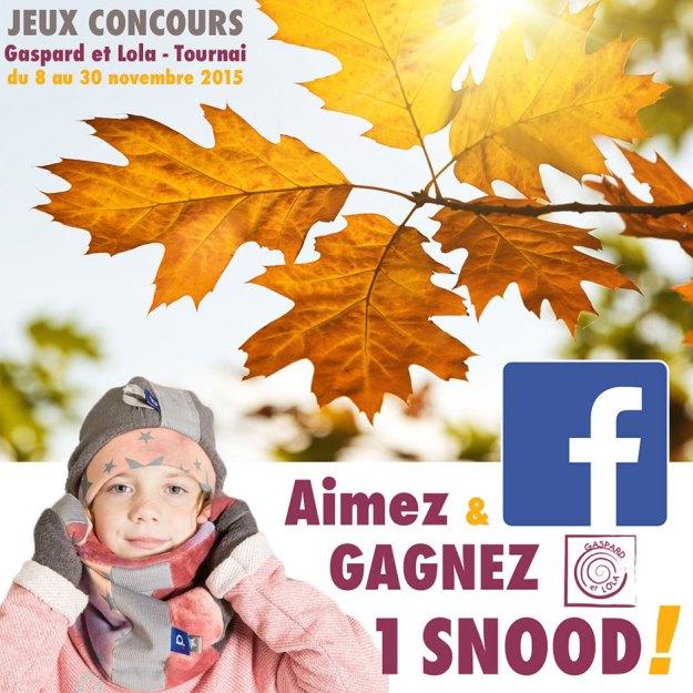 concours_snood_web
