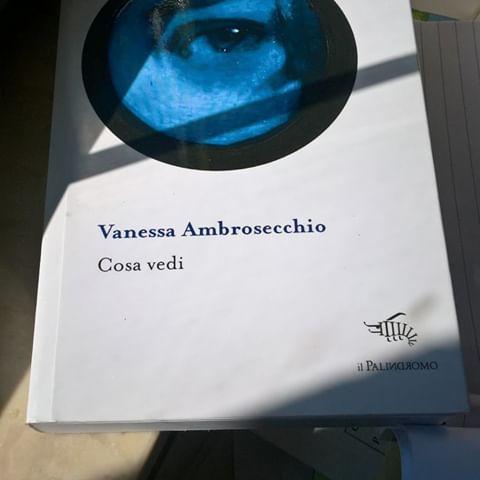 Cosa vedi di Vanessa Ambrosecchio. Recensione