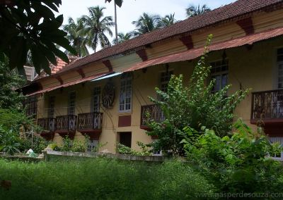 Cheers and Tears: Life in the Little Palacios of Goa