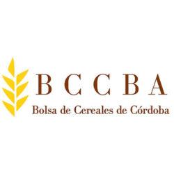 05-BCCBA