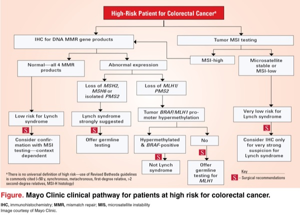 Hnpcc The Family History Of Bowel Cancer Clinic