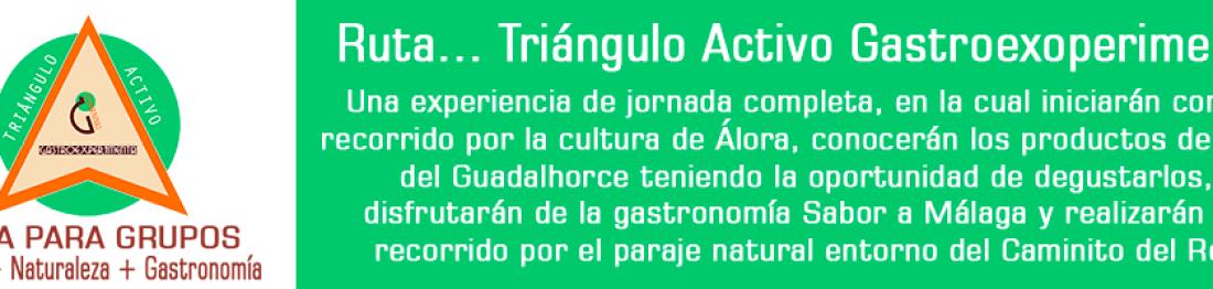 Triéngulo Activo G. Experiences
