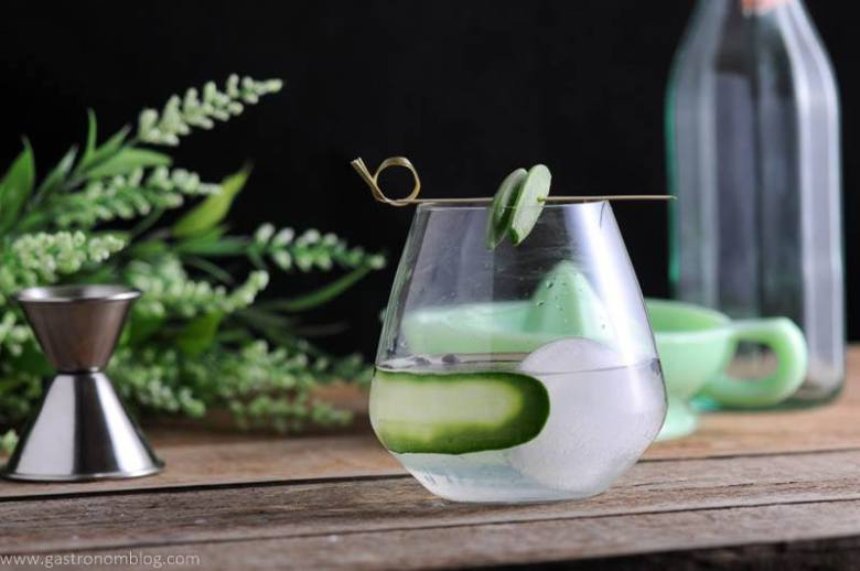 Snap Pin Gin and Tonic Cocktail